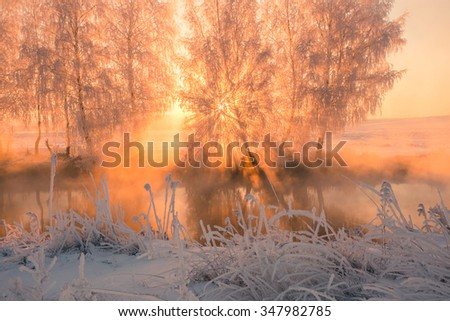 cold and foggy winter sunrise with frost grass and trees . fairy winter landscape . Misty sunlight . Sun shines through tree.  - stock photo