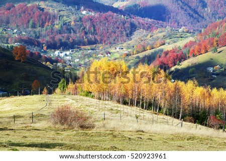 Cold autumn in Carpathian village. Bright colors after a snowfall blizzard is very beautiful scenic, beech, birch and pine forests and Hutsul houses on background ridge slopes Sokilsky