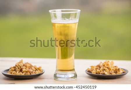 Cold beer with roasted peanuts, on wooden table, outdoor - stock photo