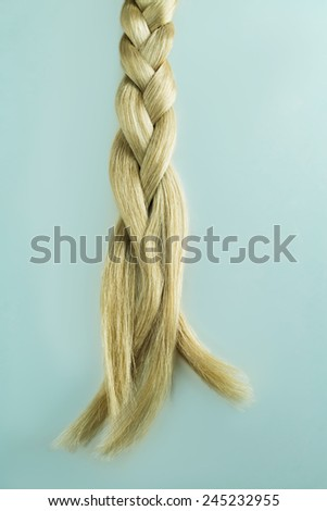 Cold Blond hair a la russe fashion, braid of beautiful healthy, glossy hair, concept of hair care  - stock photo