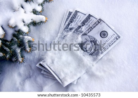 Cold cash lays in the snow.  Fir branches covered in snow, edge left side of frame. - stock photo