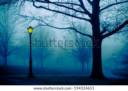 Cold foggy morning park with light post - stock photo