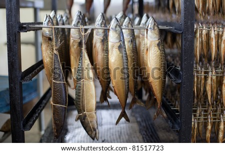 Smoked mackerel stock images royalty free images for Cold smoking fish