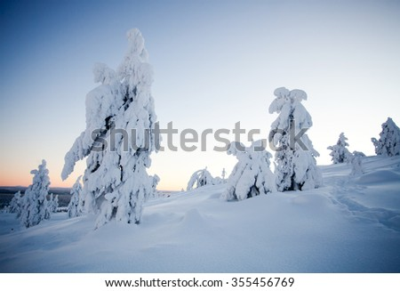 Cold winter in Lapland Finland - stock photo