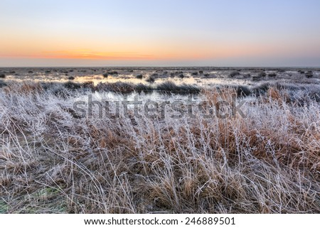 Cold Winter landscape of wetlands at sunset in the Netherlands - stock photo