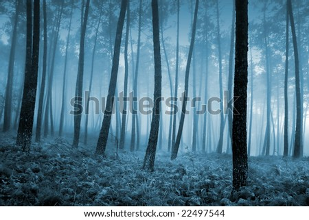cold winter landscape with snow - stock photo