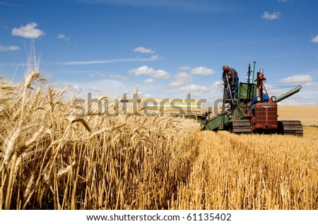COLFAX, WASHINGTON-SEPT 6: Unidentified farmer harvests wheat using an old combine on September 6, 2010 in Colfax. The threshing bee uses old machines and Draft horses and attracts crowds. - stock photo