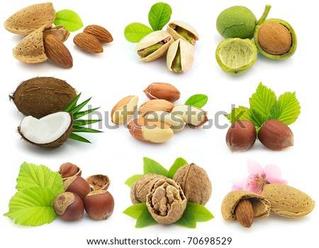 Collage from fresh nuts with leaves - stock photo