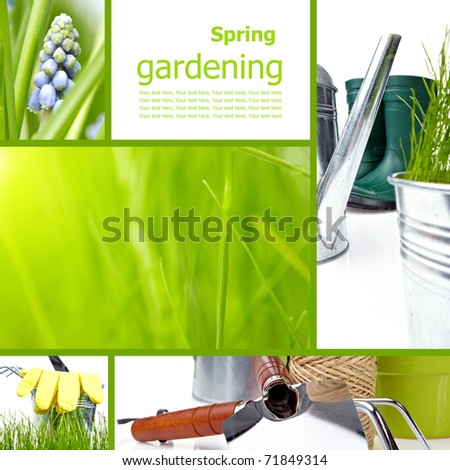 Collage garden and spring - stock photo