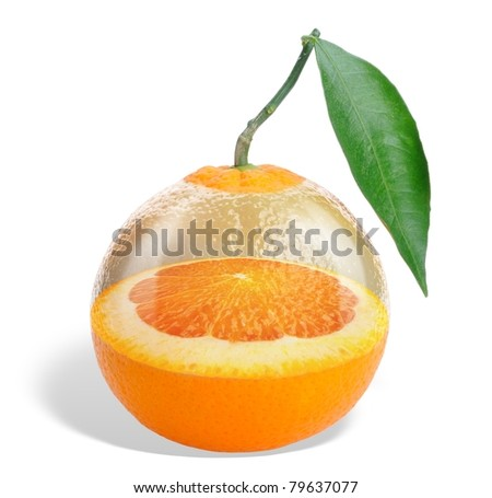 Collage. Glass orange - an orange tree growing within the orange isolated on white - stock photo
