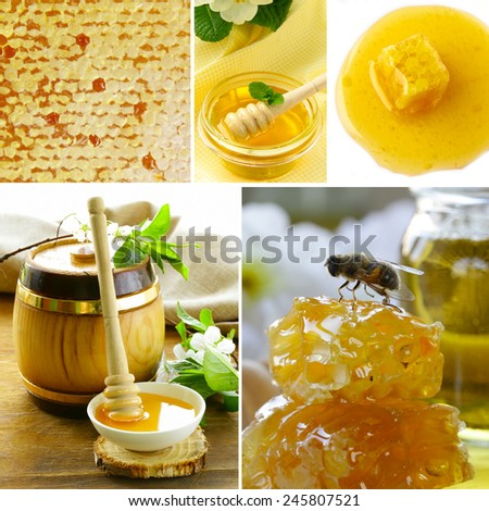 collage honeycomb and  honey in jar organic product - stock photo