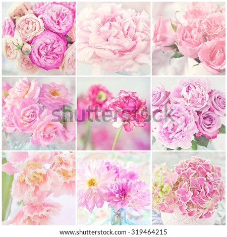 collage of a blooming pink flowers close-up. - stock photo