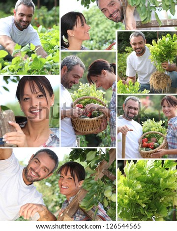 Collage of a couple in their garden - stock photo