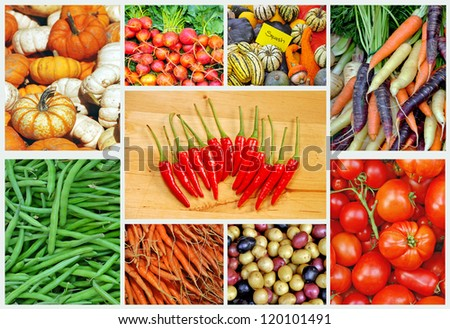 Collage of assorted colorful vegetables - stock photo