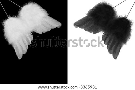 collage of black and white feather angel wings on contrasting backgrounds - stock photo