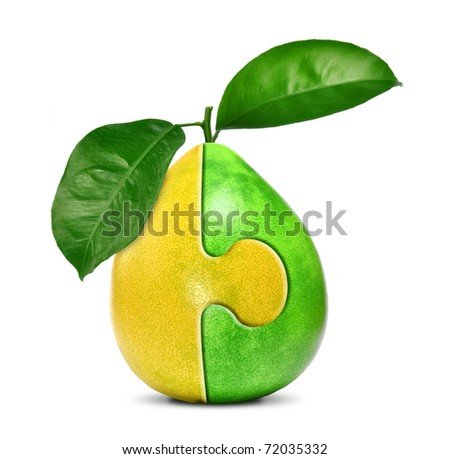 collage of citrus isolated on white background - stock photo