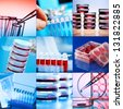 Collage of clinicians studying microbiology genetics in laboratory - stock