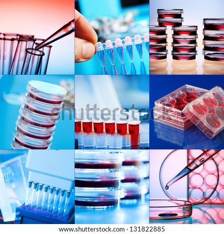 Collage of clinicians studying microbiology genetics in laboratory - stock photo