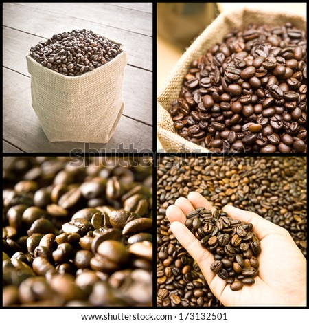 collage of coffee beans, seed, grain - stock photo