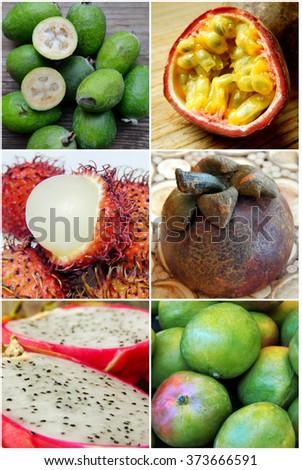 Collage of different exotic fruit - passion fruit, pitahaya, mango, rambutan - stock photo