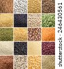 Collage of 20 different legumes and cereals close up - stock photo