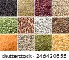 Collage of 12 different legumes - lentils, beans and peas - stock photo