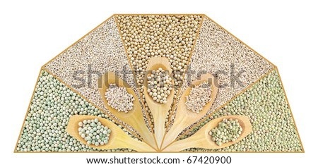 Collage of dry lentil, pea, soybean, oat and barleycorn - stock photo