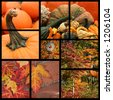 Collage of fall scenics - stock photo