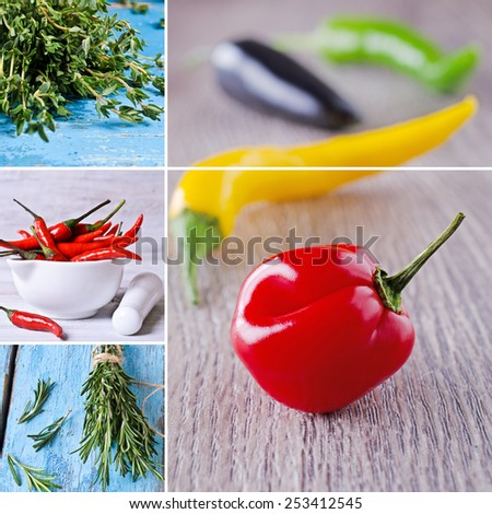 Collage of fresh thyme, rosemary and hot pepper - stock photo
