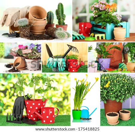 Collage of gardening closeup - stock photo