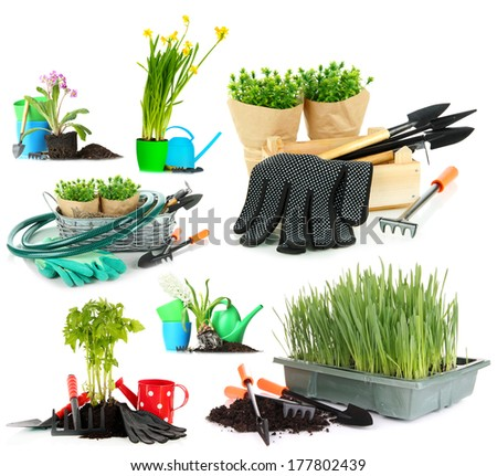 Collage of gardening isolated on white - stock photo