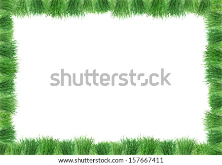 Collage of green grass isolated on white - stock photo