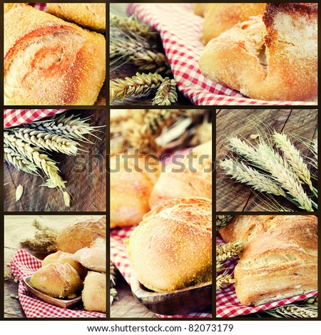 Collage of  healthy bread variety images. Buns, rolls, wholewheat bread in country setting with wheat on wooden tree trunk background. - stock photo