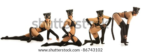 Collage of hot beautiful models in latex cat costume - stock photo