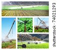 Collage of irrigation images - stock photo