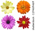 collage of isolated colorful flowers - stock photo