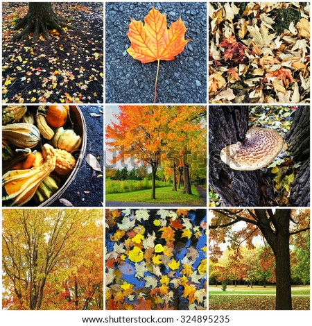 Collage of nine autumn nature photos. Quebec, Canada.