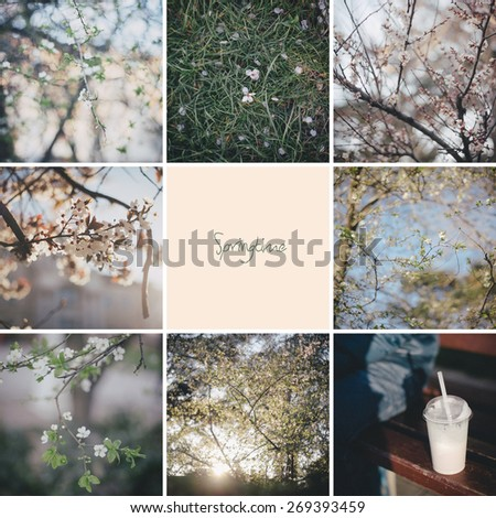 Collage of nine photos about spring - stock photo