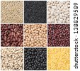 collage of nine species of legumes close-up - stock photo