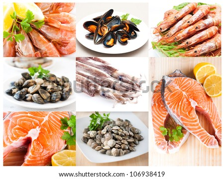 Collage of photos from the fishery products - stock photo
