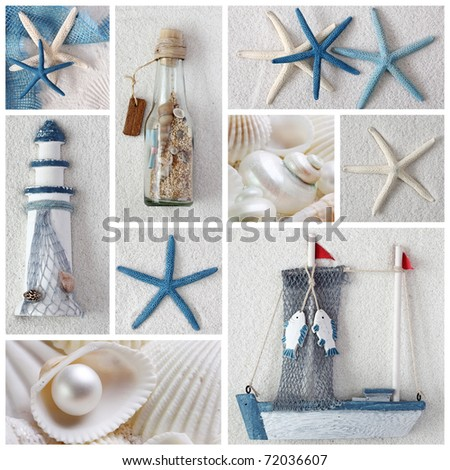 Collage of summer sea stars - stock photo