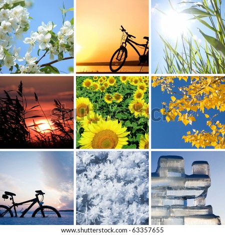 Collage of the four seasons: spring, summer, autumn, winter - stock photo