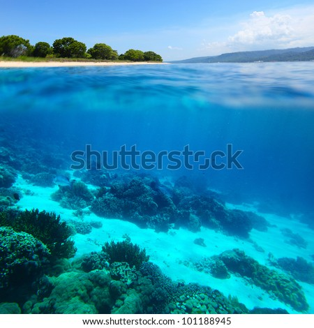 Collage of underwater coral reef and sea surface with green island on the horizon - stock photo