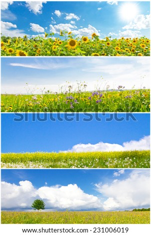 Collage of various nature landscapes in spring - stock photo