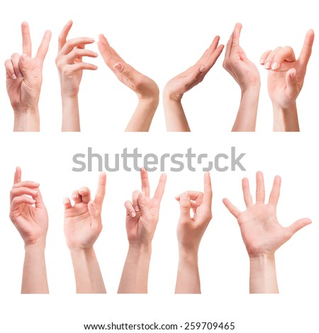 collage photo of female hands on a white background - stock photo