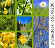 Collage spring with daffodils, daisy, hazel tree, staircase and a beautiful blue sky - stock photo