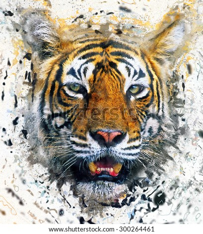 Collage tiger image - stock photo