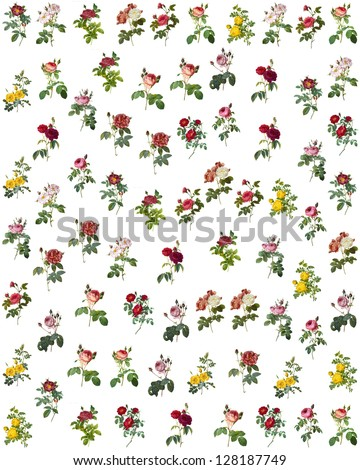 collage with floral images - stock photo