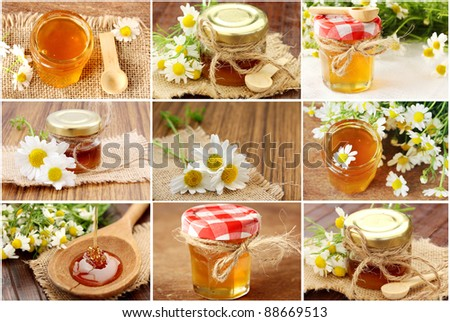 collage  with fresh honey - stock photo