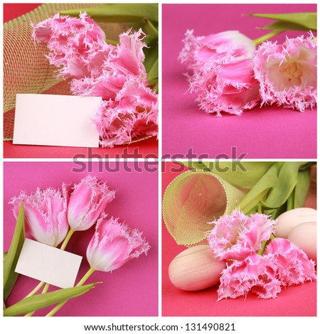 collage with photos of fresh natural pink tulips on Easter theme